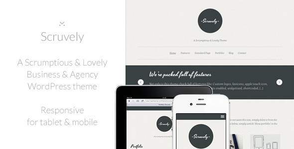 scruvely Nerdy: A WordPress Blog Theme (Personal)